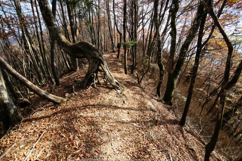 Climbing up Kumotori-san
